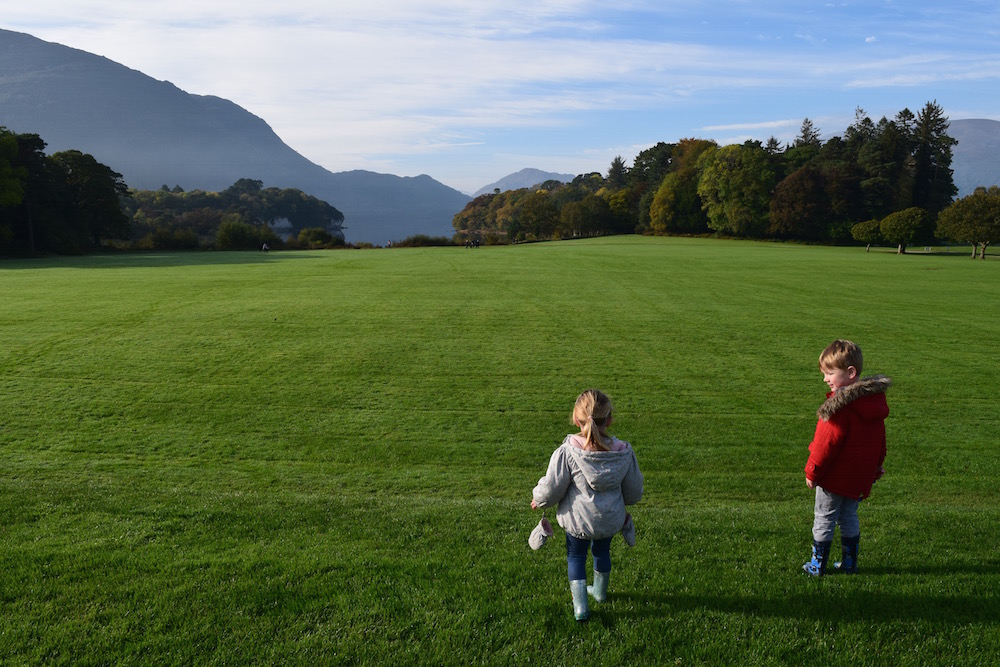 Exploring Killarney National Park: Where to Visit With Children