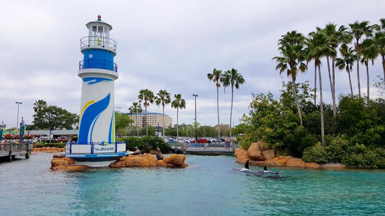 Love Florida: Our Day at SeaWorld Orlando