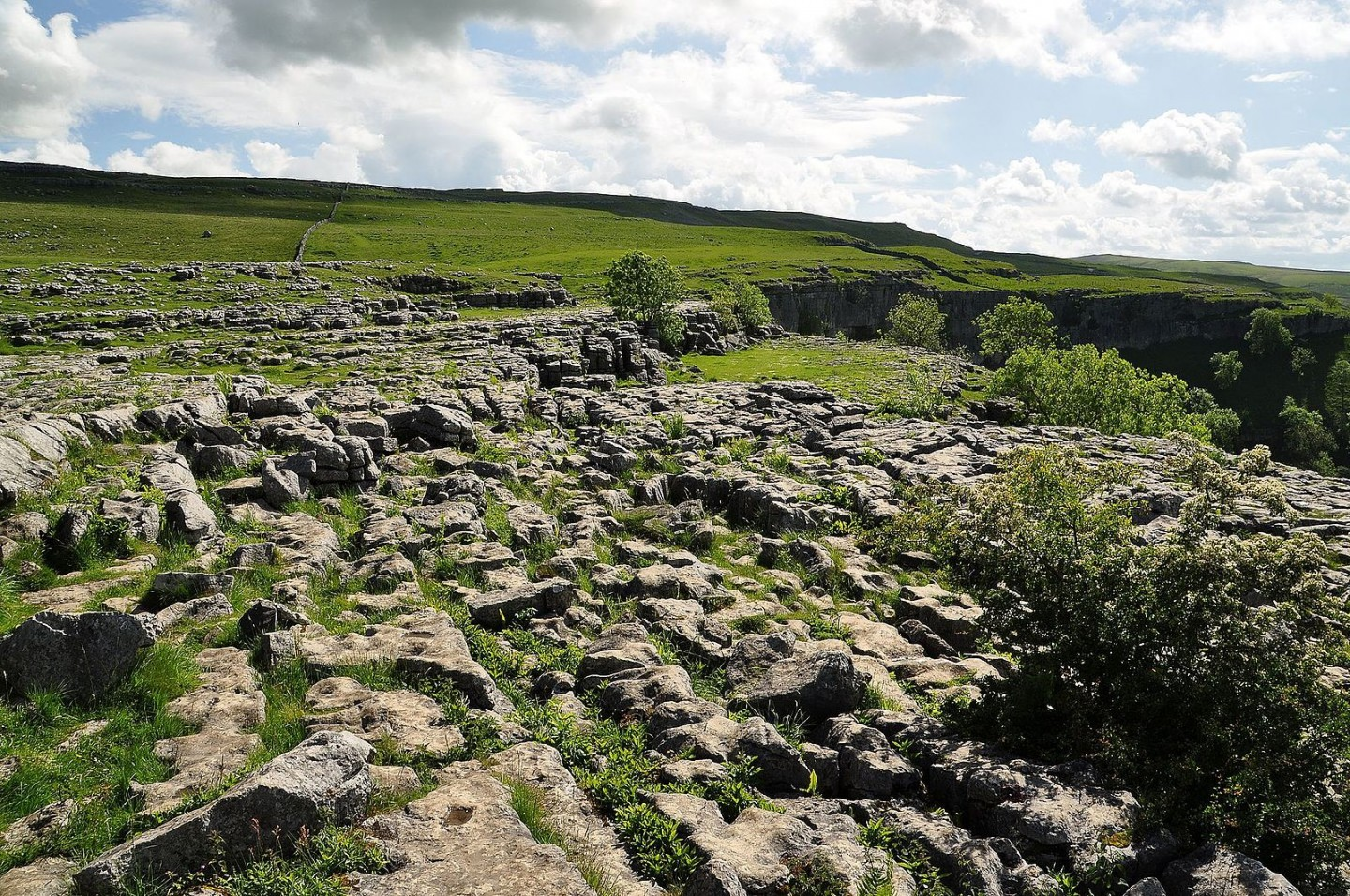 Limestone_pavement_above_Malham_Cove_(5831)