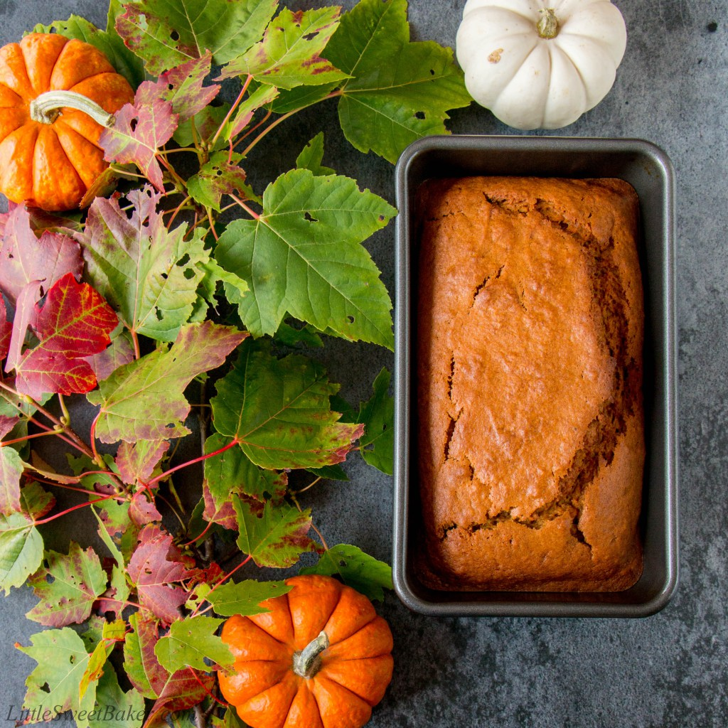 Pumpkin spice and all things nice: Recipes you'd be mad to miss!
