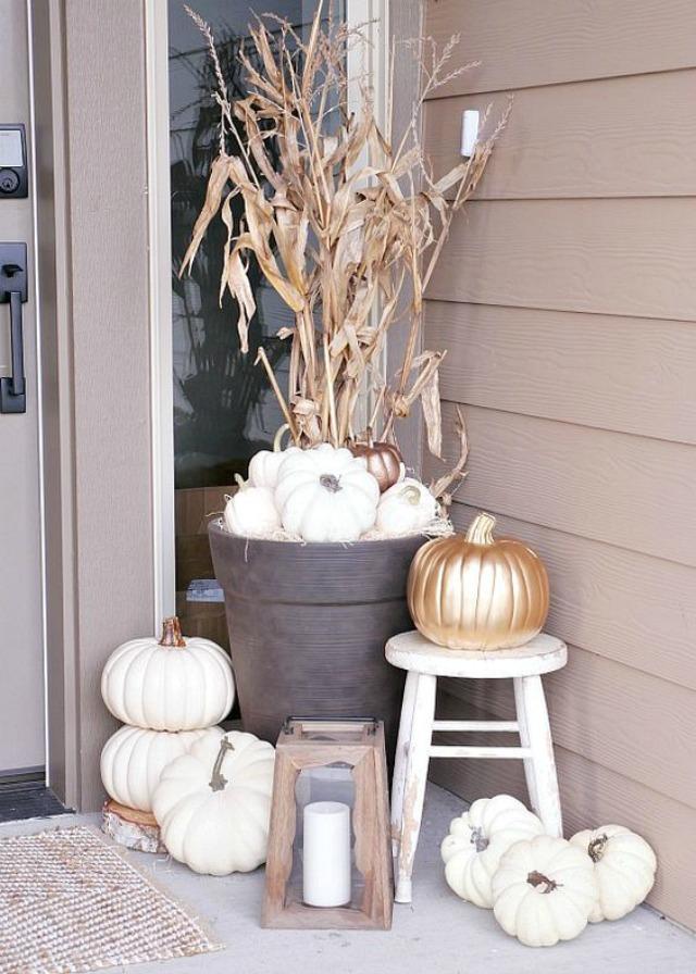 pumpkin5f
