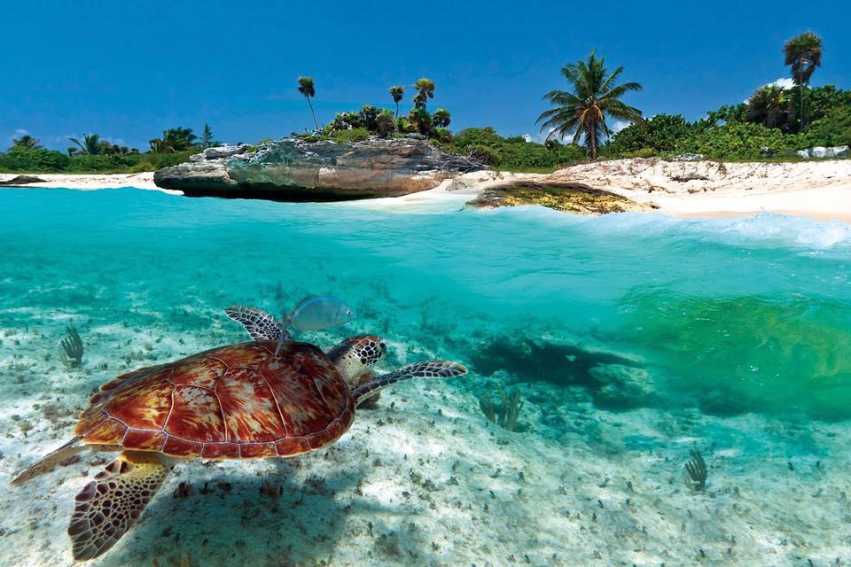 Top 5 Hidden Beaches to Visit in 2018