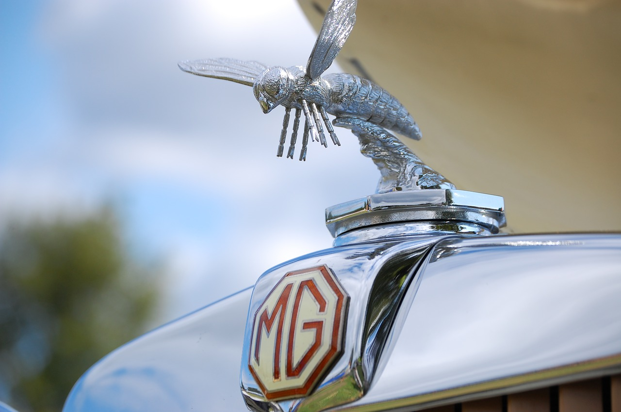 What MG is Best Suited To You?