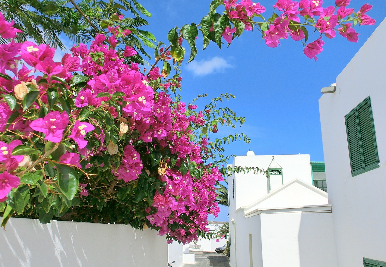 5 Reasons That Lanzarote Should Be Your Next Dream Holiday