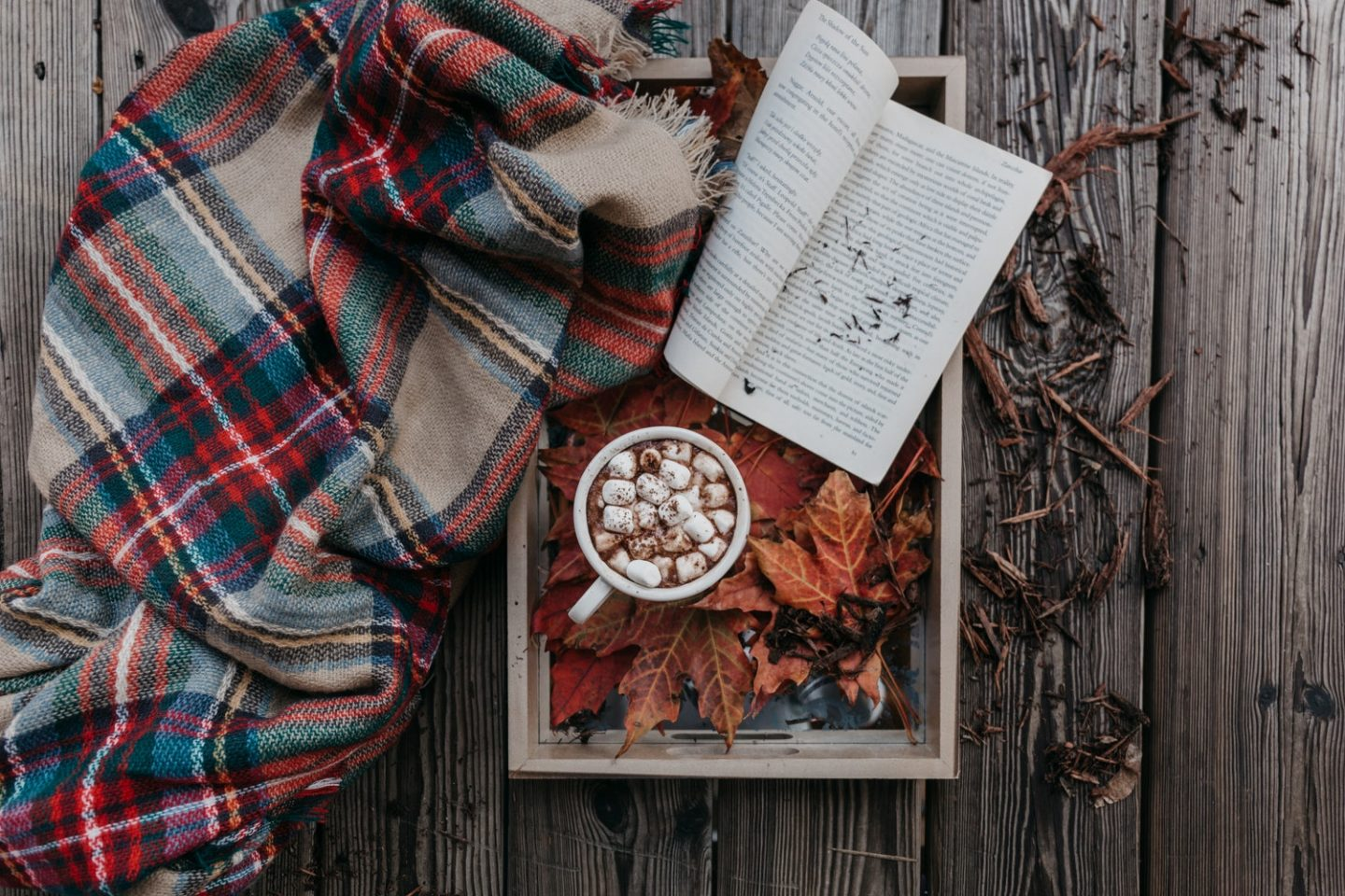 Autumn Vibes: Bucket List For the Season