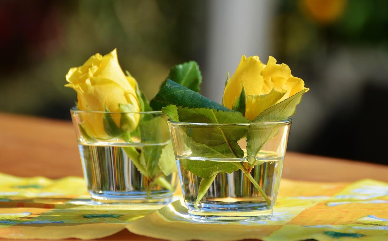 glass-1659096_1280