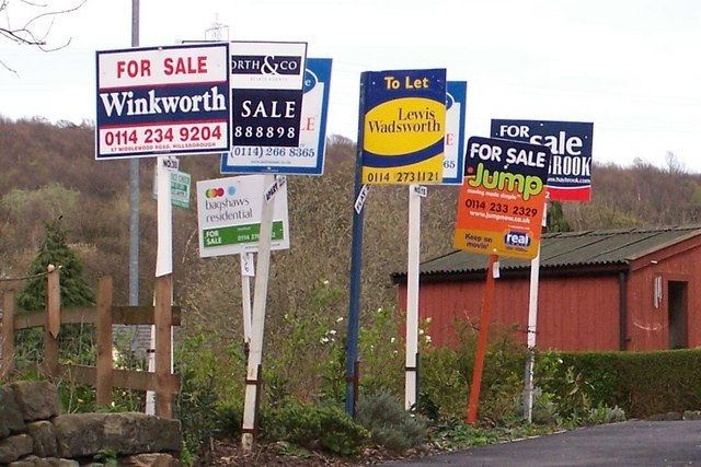 Forest_of_For_Sale_Signs_in_Oughtibridge_-_geograph.org.uk_-_714759