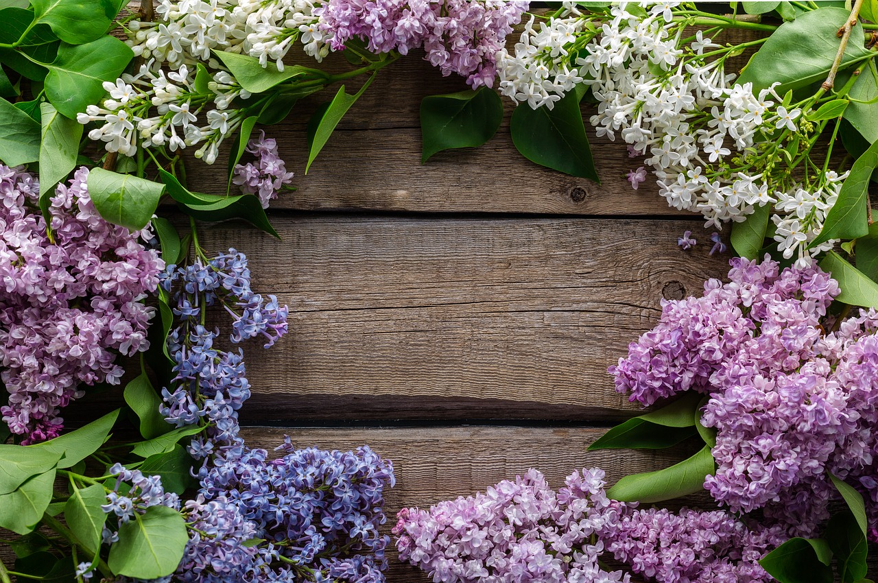 A Few Of Our Favourite Things in May