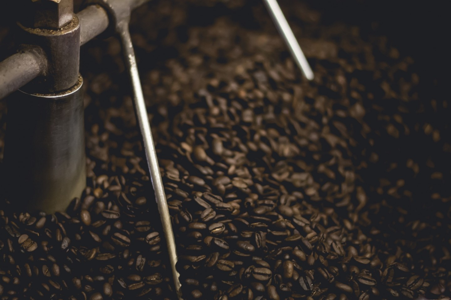 The Definitive Coffee Lowdown: Health Benefits and Concerns