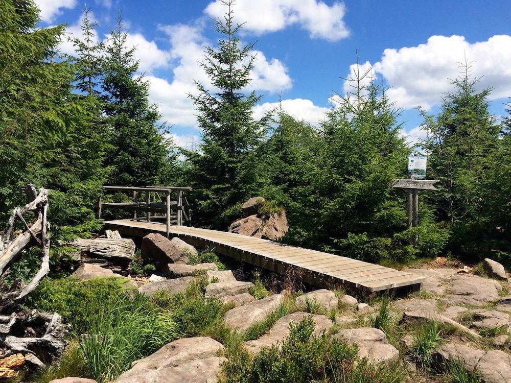 Hiking & Outdoor Adventure Trip: Baden-Baden & The Black Forest