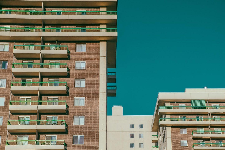 The hazards of urban living
