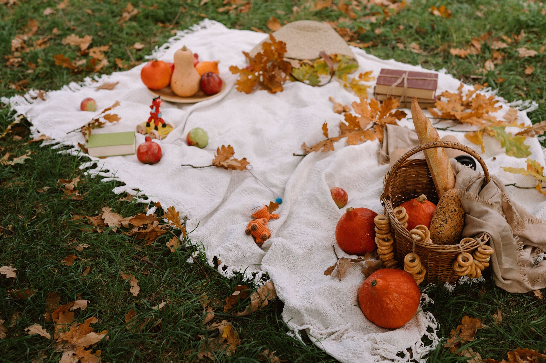 autumn composition with assorted pumpkins and bread in basket placed on plaid on grassy lawn
